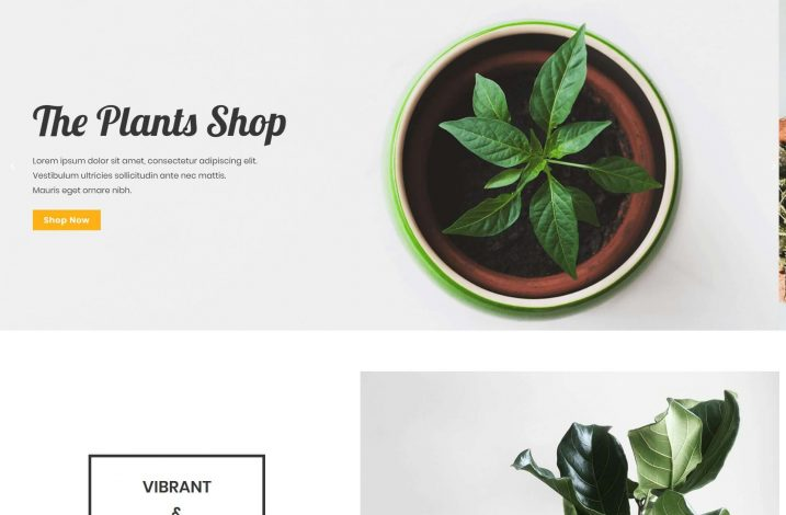 /templates/plant-shop-homepage/