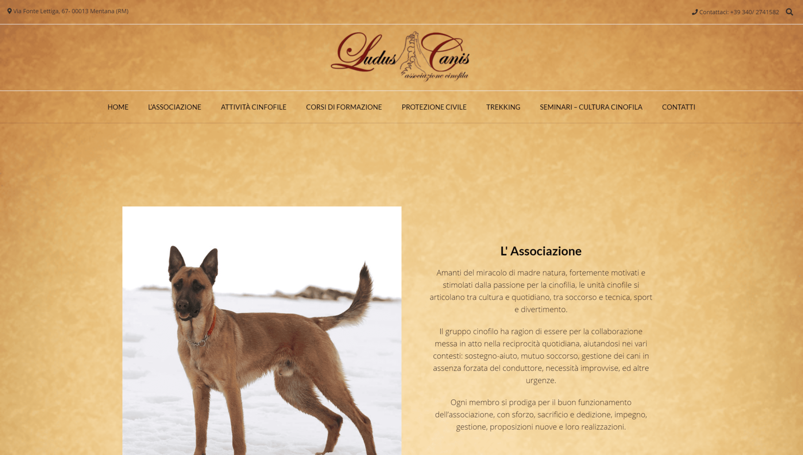 Luidus Canis Association