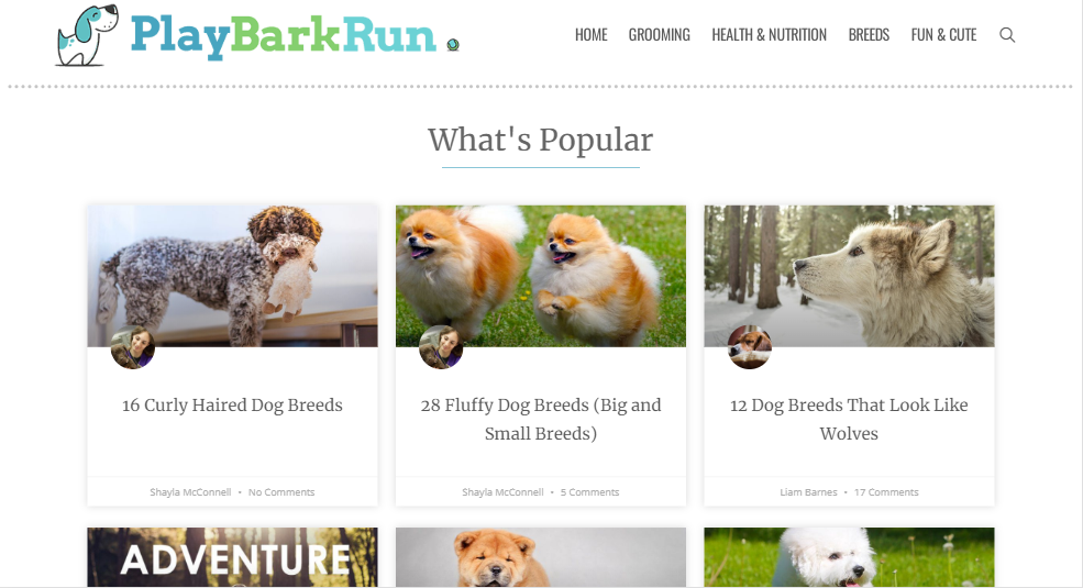 play bark run