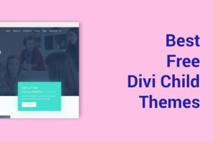 12+ FREE Divi Child Themes for 2020