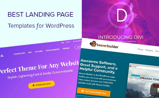 20+ Best Divi Landing Pages for 2020